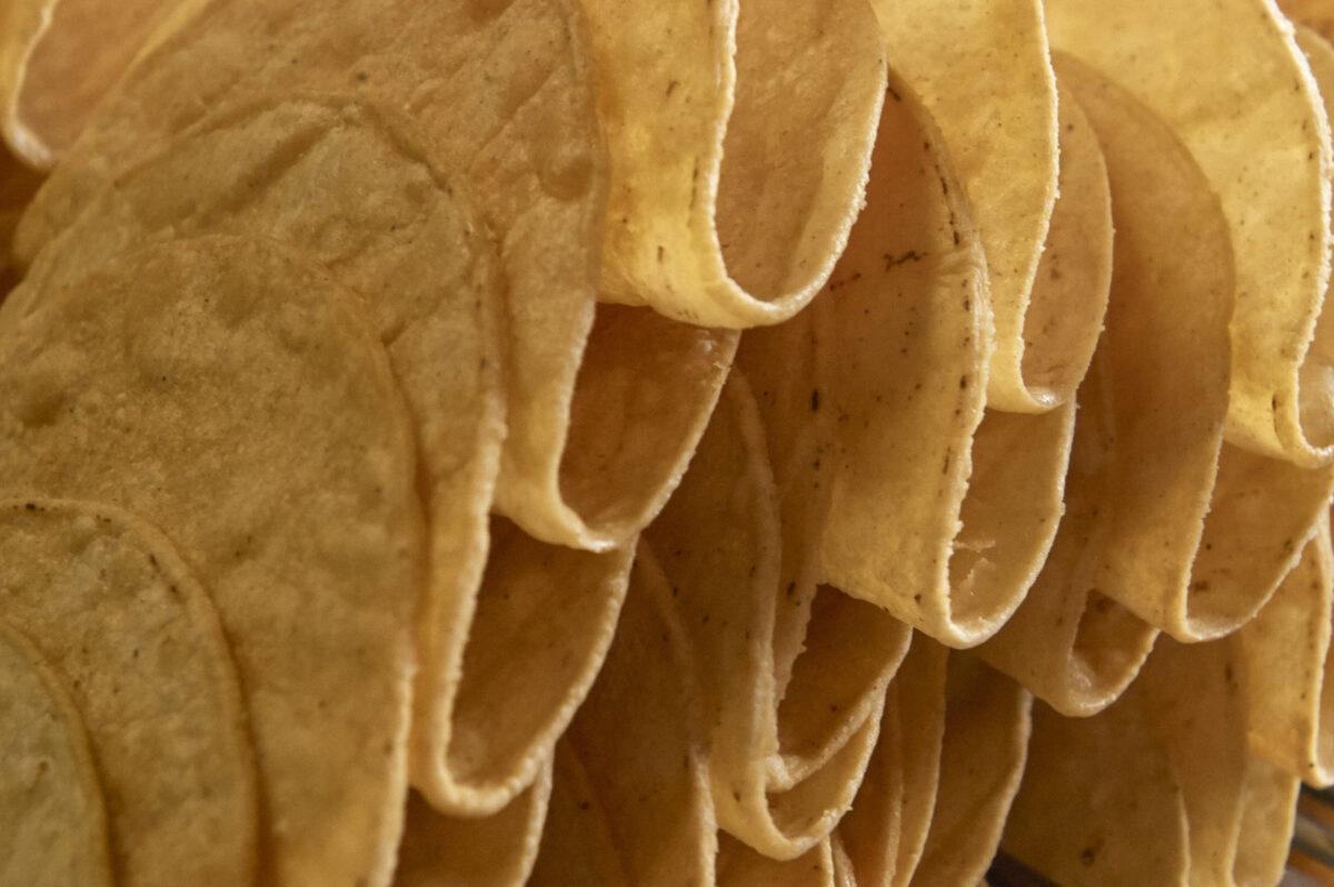 Corn Taco Shells